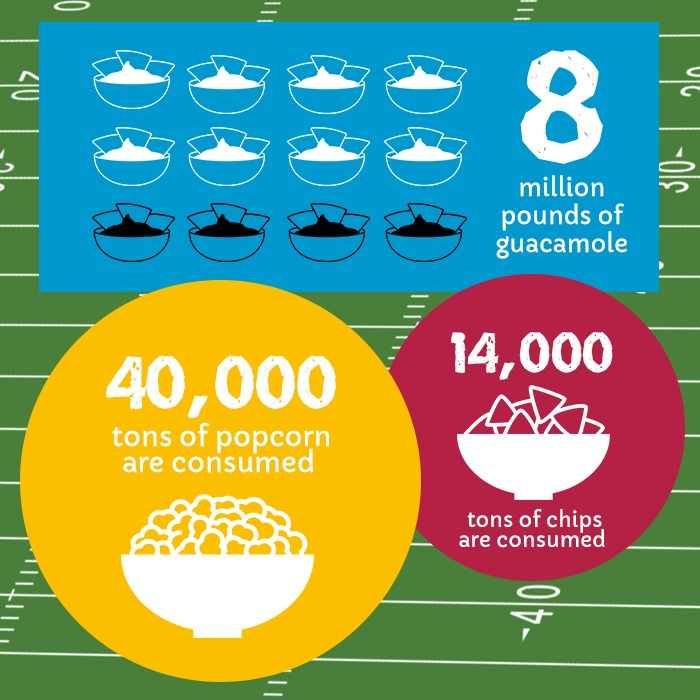 2016 Super Bowl Facts